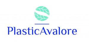plastica a valore istituto italiano dei plastici